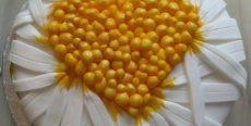 Small_Daisies_01